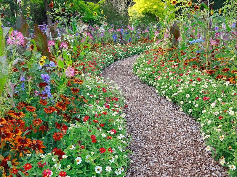 tuinposter 39 pad door bloementuin 39 teun 39 s tuinposters On www bloem en tuin nl