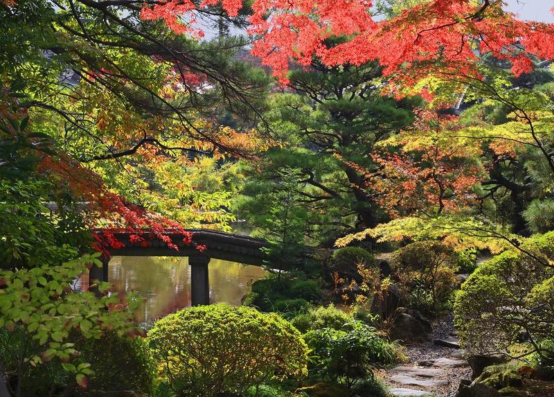Tuinposter japanse tuin met veel kleurschakeringen en stenen brug