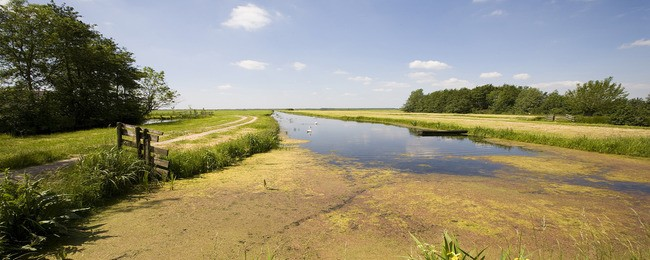 Tuinposter van Noord-hollands landschap