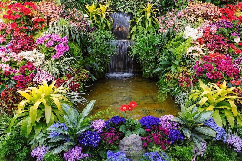 Tuinposter 39 watertrap met bloemen 39 teun 39 s tuinposters for Tuinposters intratuin