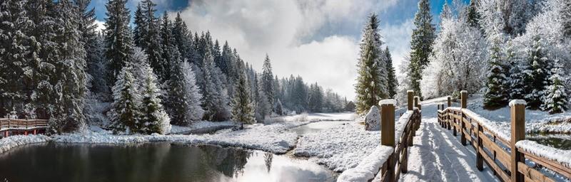Tuinposter Kerst Winterlandschap Teun S Tuinposters