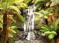 Tuinposter waterval