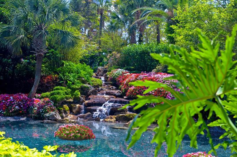 Waterval In Tuin : Tuinposter waterval in botanische tuin uitmondend in een meer