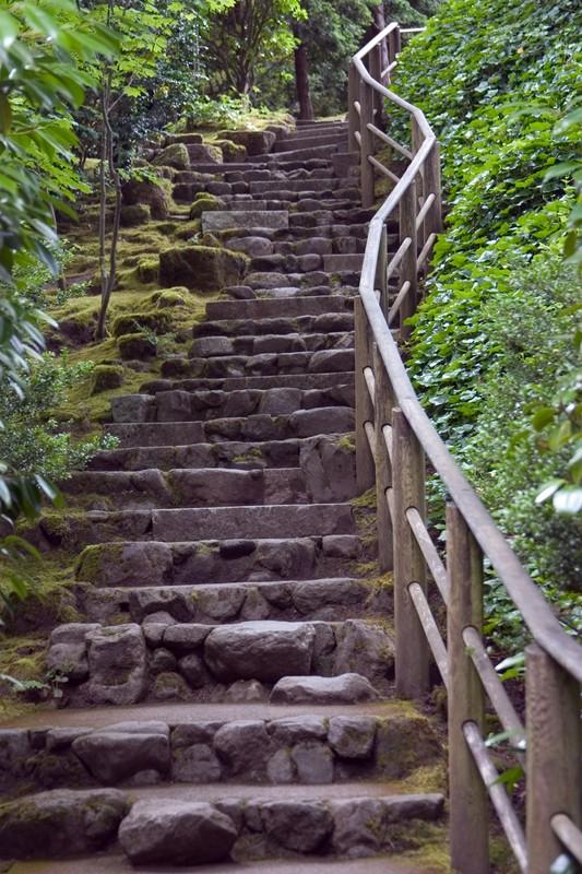 tuinposter 39 stenen trap 39 teun 39 s tuinposters