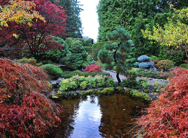 Tuinposter 39 japanse tuin met een vijver 39 teun 39 s tuinposters for Tuinen aanleggen foto s