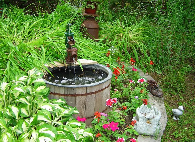 tuinposter 39 oude waterpomp als vijver met een kikker